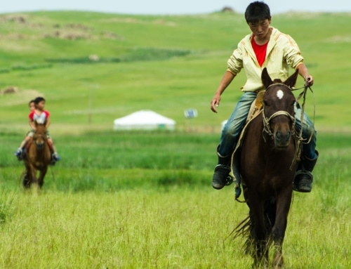 Mongolia… un paese magico